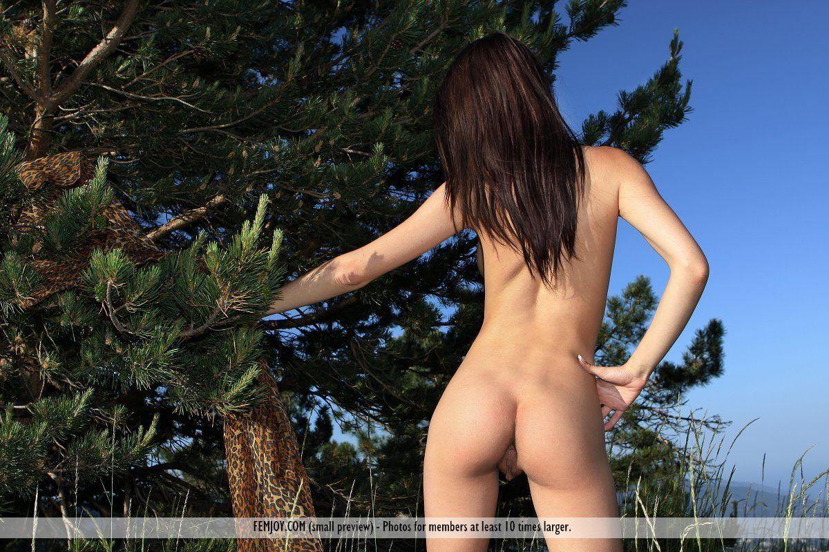 Download Cheeky Photos Wallpaper Background